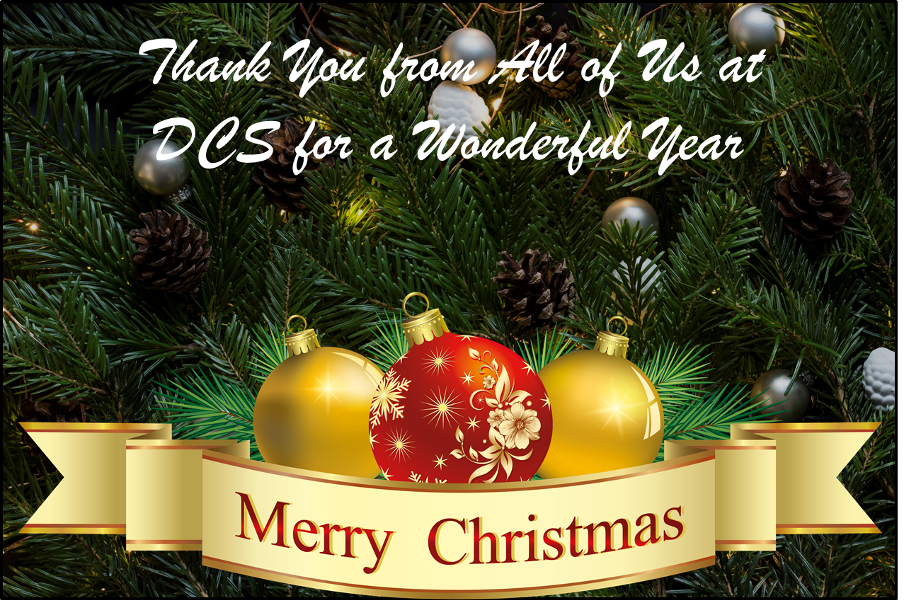 2017-DCS-merry-christmas-dcs-wonderful-year.png